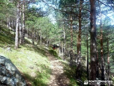 Maliciosa - Sierra de los Porrones [Serie Clásica] excursiones en madrid y alrededores senderismo p